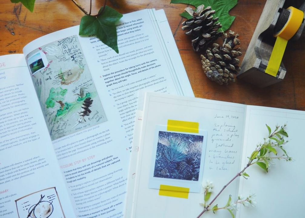 nature journaling for adults